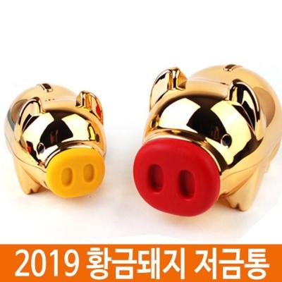 2019 돼지저금통 황금돼지저금통