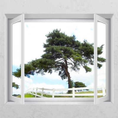 ij845-영원불멸의상징소나무1_창문그림액자
