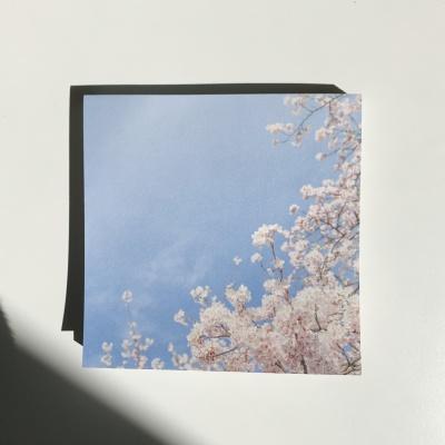 밍키트 벚꽃 떡메모지