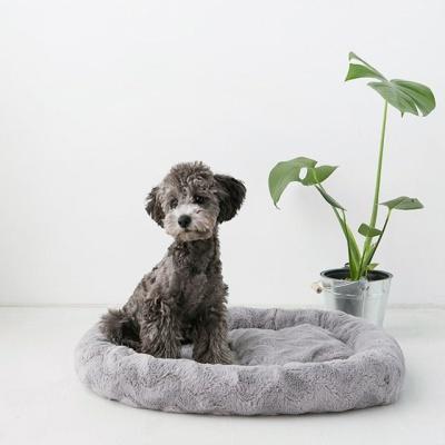 마켓비 KULJAM 펫베드 강아지침대 쿠션 타원 60x50
