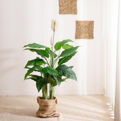 열대 나무 조화 (스파티필럼-130cm)
