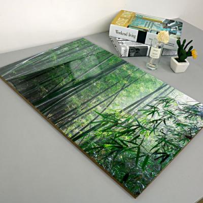 cl335-아크릴액자_청량한대나무숲