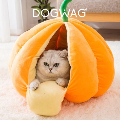 강아지 고양이 과일 숨숨집 호박 하우스