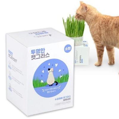 제이네이처 투명한 캣그라스 (소형) 고양이용품