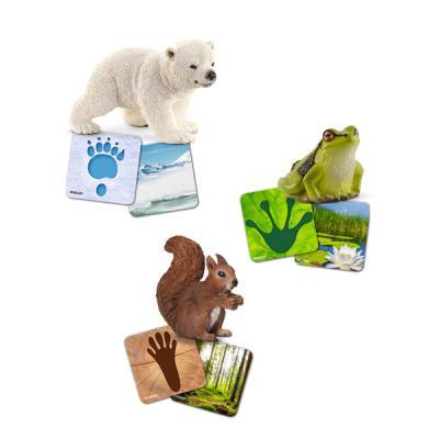 [슐라이히]야생동물 플래쉬 카드세트