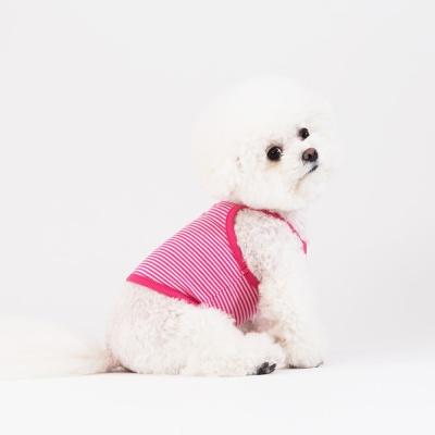 스니프 캔디 크롭 탑 (핑크)