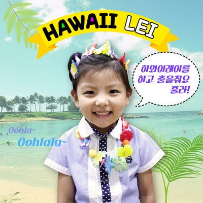 하와이 레이 패키지