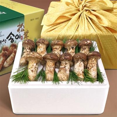 강원도 자연산 송이버섯 1kg/특상품 12~18뿌리(냉동)