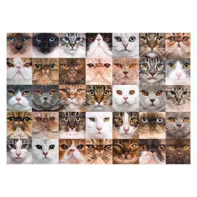 아이엠미니 직소퍼즐 1000피스_고양이 컬렉션
