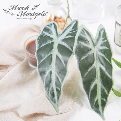 [마쉬매리골드]조화2잎 칼라데아_56CM
