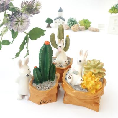 토끼와 다육 선인장 3p set