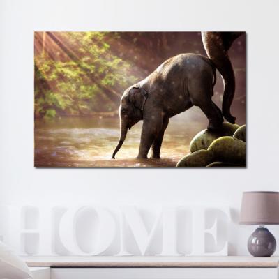 캔버스액자 자연 세렝게티 아기코끼리 A타입 25x25cm