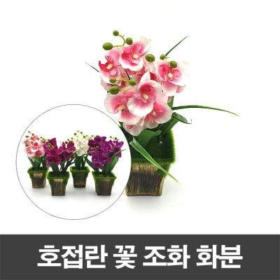 호접란 꽃 조화 화분