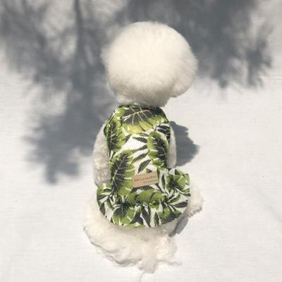 정글원피스