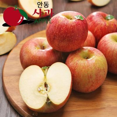 [아삭아삭] 경북안동 고냉지 꿀 사과 5kg/20~21과