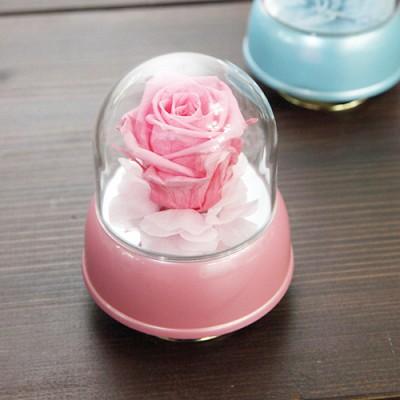 [더봄/프리저브드플라워] 핑크 장미 미니 오르골