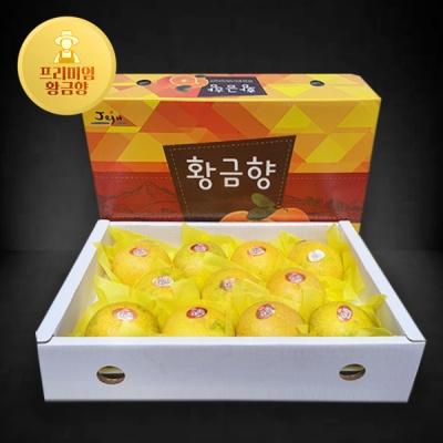 [해올렛] 청정제주 황금향 5kg/21~25과