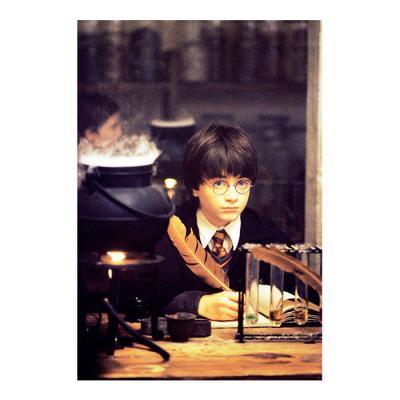 해리 포터 홀로그램 엽서 1:해리 포터