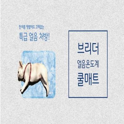 애견쿨방석 브리더 아이스 쿨매트 핑크L 아이스방석