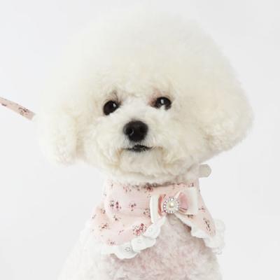 아츄목줄 핑크