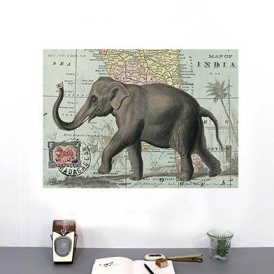 카발리니 포스터+보관통 Set -Elephant