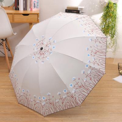 비오라 꽃무늬 양우산
