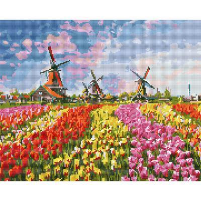 꽃의 나라 (캔버스형) 보석십자수 40x50