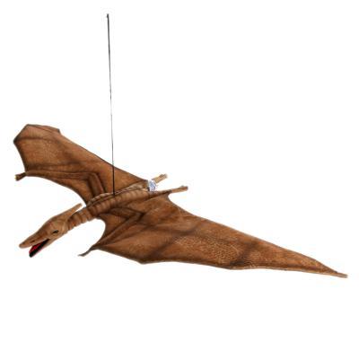 5102번 익룡 동물인형 100cm.w
