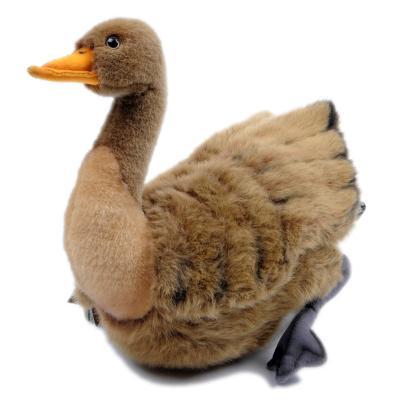 3077번 야생오리 Wild Duck Mama/34cm.L