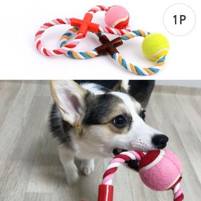 강아지 볼 장난감 1개(색상랜덤)