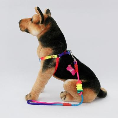 강아지 하네스 가슴줄(레인보우)