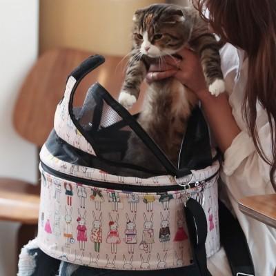 2015 New 고양이 패션 이동장 - 큐티 토끼 이동가방 - 고양이용/고양이 가방