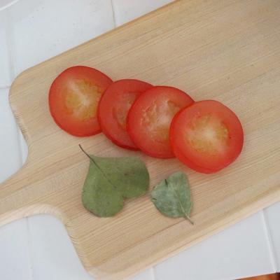 모형 토마토조각_4P SET