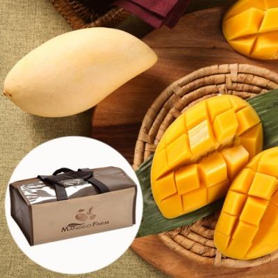 [스위트망고] 과일의왕 망고 선물세트 3kg/12개(대)