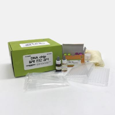 DNA chip(질병진단검사)
