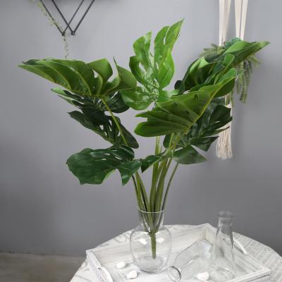 고속터미널꽃시장 몬스테라 부쉬 65cm 시들지않는꽃