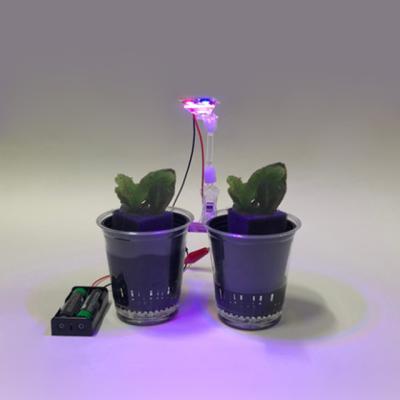 실내농법수경재배(LED식물재배)