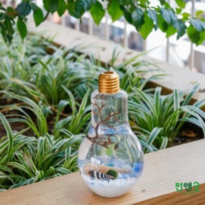 수경재배 반려식물 마리모 어항  LED전구 선물 세트
