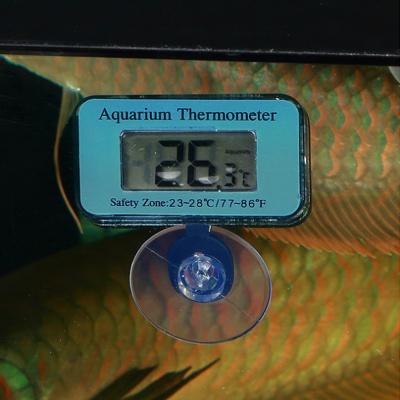 어항 속 수온측정 온도계 / 디지털 수족관온도계