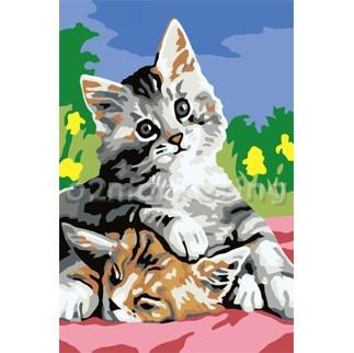 DIY 명화그리기 - DIY   나른한고양이 (CX3010) 20x30 그림 (유화/그림그리기/직접그리기/아크릴/취미/색칠)