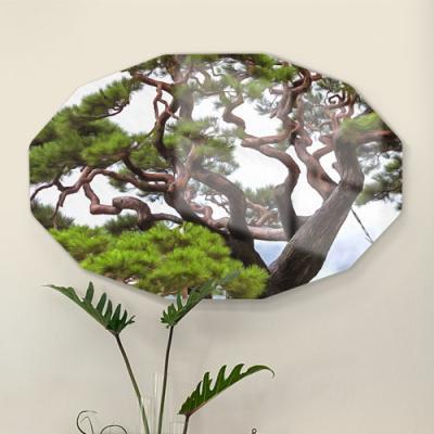 af465-폼아크릴액자58CmX38Cm12각형_굳건한풍수소나무