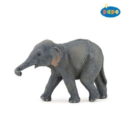 아기 아시아코끼리