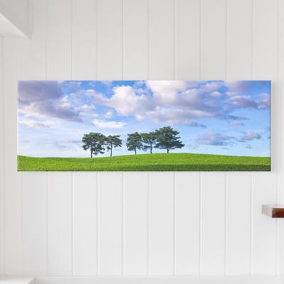 cq356-파란하늘아래다섯나무_대형노프레임