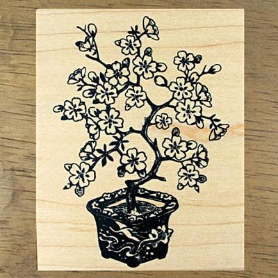 [나무] 매화 분제