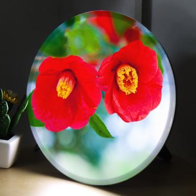 na918-LED액자25R_눈물처럼후드득떨어지는꽃동백