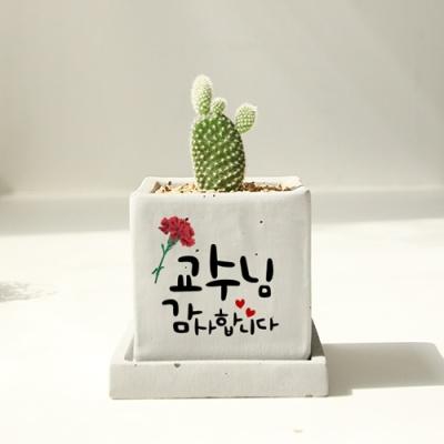 [카네이션 장식]캘리그라피화분