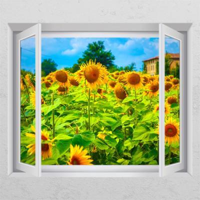 cl888-풍수꿈이담긴해바라기꽃밭_창문그림액자