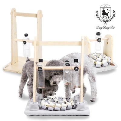 [딩동펫] 강아지 노즈워크 킁킁나무 멀티형