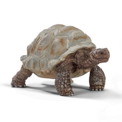 [슐라이히]자이언트 거북
