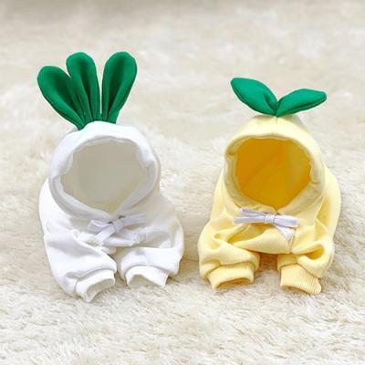 과일채소후드